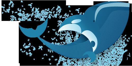 illustration-baleine-ldcrea4